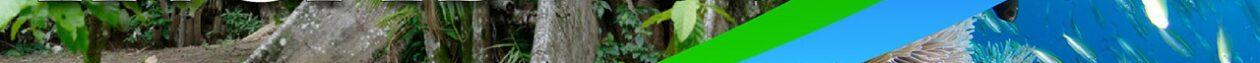IRCAB – Institut de recherche en sciences sociales sur la biodiversité Caraïbe-Amériques